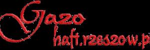 logo[2]1